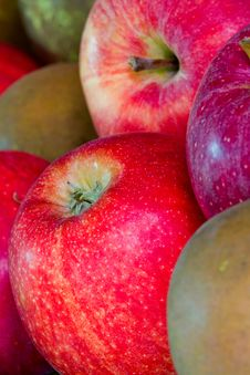 Free Apples Stock Photos - 21570883