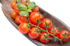 Free Cherry Tomatoes With Basil Stock Photos - 21572023
