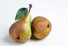 Free Two Pears Royalty Free Stock Images - 21572169