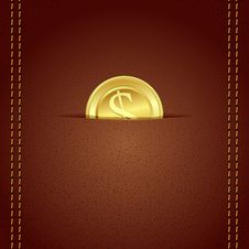 Free Gold Coin In Wallet Royalty Free Stock Photo - 21574325