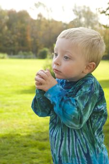 Free Little Boy Praying Royalty Free Stock Image - 21576466
