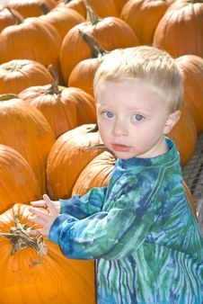 Free Little Boy With Pumpkins Royalty Free Stock Images - 21576479