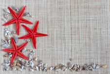 Free Starfish And Shells Royalty Free Stock Image - 21581296