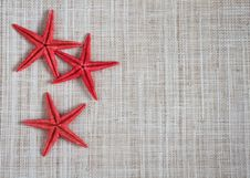 Free Starfish On Hessian Royalty Free Stock Photo - 21581365