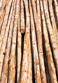 Free Wood Bracing. Royalty Free Stock Image - 21589696