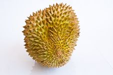 Free Single Whole Durian On White Background Royalty Free Stock Photos - 21589708