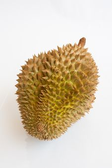 Free Single Whole Durian On White Background Stock Photos - 21589733