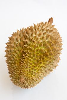 Free Single Whole Durian On White Background Royalty Free Stock Images - 21589739