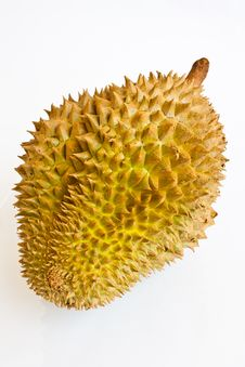 Free Single Whole Durian On White Background Stock Image - 21589751