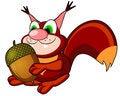 Free Squirrel With Acorn Stock Photos - 21590993