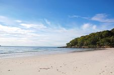 Free Tropical Beach Stock Photo - 21590460