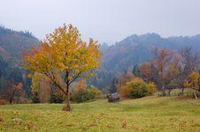 Free Autumn Landscape Stock Photo - 21593480