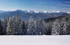 Free Winter Landscape Stock Images - 21593664
