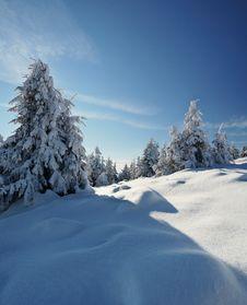 Free Winter Landscape Royalty Free Stock Image - 21593696