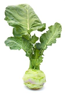 Free Cabbage Kohlrabi On A White Background Stock Photography - 21593992