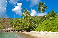 Free Tropical Holidays Royalty Free Stock Image - 21597636