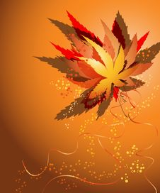 Free Bouquet Autumn Leaves Stock Photography - 21599412