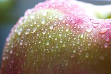 Free Wet Pink Apple Royalty Free Stock Images - 2161379