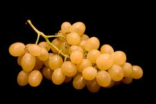 Free White Grapes Royalty Free Stock Photos - 2166718