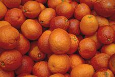 Bloody Oranges 2 Stock Photo
