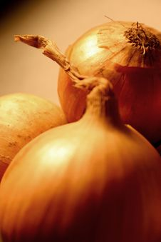 Free Onions Royalty Free Stock Image - 2168056
