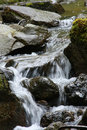 Free Little Waterfall Royalty Free Stock Images - 21601519