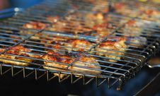 Free Grill Royalty Free Stock Images - 21601259