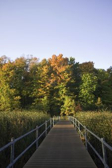 Free Boardwalk To Autumn Colors Royalty Free Stock Image - 21601336