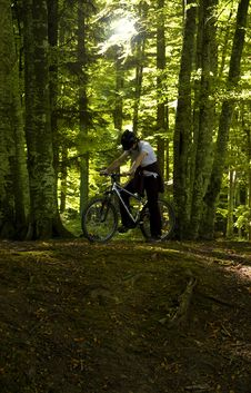 Free Mountain Biker Royalty Free Stock Photography - 21603047
