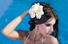 Free The Beautiful Girl In Pool Stock Image - 21604801