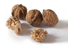 Free Walnut Seed Royalty Free Stock Images - 21606669