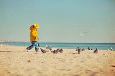 Free The Child And Pigeons Stock Photo - 21607410