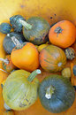 Free Pumpkins And Gourds Royalty Free Stock Photos - 21613348