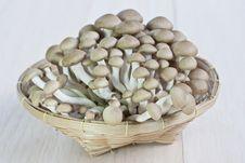 Free Fresh Mushrooms Royalty Free Stock Image - 21615796