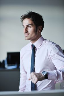Free Young Businessman At Office Stock Photos - 21624863
