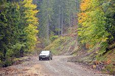 Free Autumnal Traffic Stock Photos - 21630093