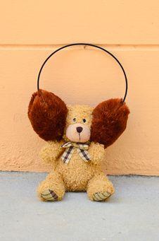 Free Teddy Bear Royalty Free Stock Image - 21631296