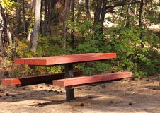 Free Campground Picnic Table Royalty Free Stock Images - 21631469