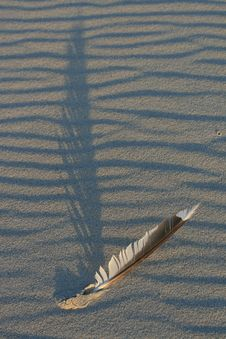 Sand And Feather Royalty Free Stock Images