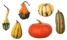 Free Assortment Of Squash Stock Images - 21636404