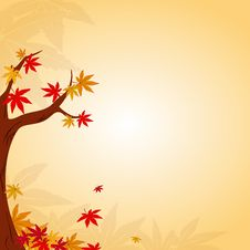 Free Abstract Autumn Leaves Background Stock Image - 21640661