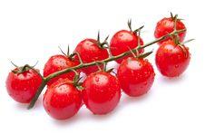 Free Washed Fresh Cherry Tomatoes Stock Photography - 21645292