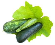 Free Marrows Stock Images - 21657784