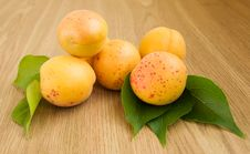 Free Apricots Stock Photo - 21657790