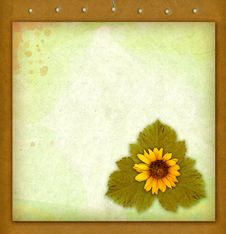 Free Old Paper And Flower Royalty Free Stock Photo - 21667085