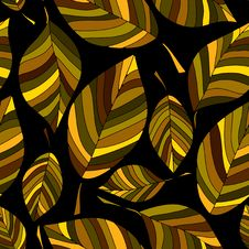 Free Autumn Pattern Royalty Free Stock Images - 21667989