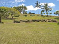 Free Tropical Backyard Royalty Free Stock Photos - 21670568