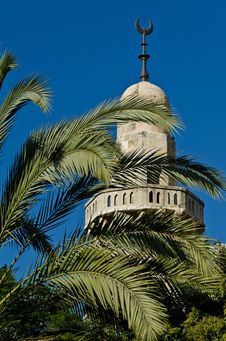 Free Mosque Between The Palm Tree Branches Stock Images - 21672034