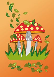 Fly-agaric Stock Images