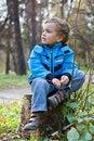 Free Little Boy Sitting On The  Tree Stump, Fall, Park Stock Photos - 21680863